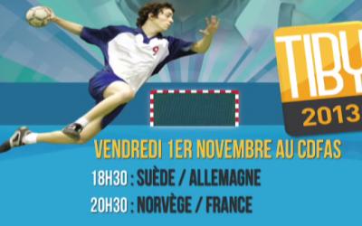 Vendredi 1 novembre 2013 - 18h30 : Suède / Allemagne